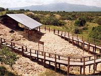 Olorgesailie – National Museums of Kenya