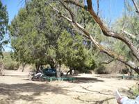 picnicsite